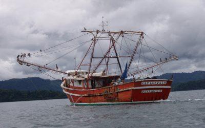Nuevo intento por revivir pesca de arrastre