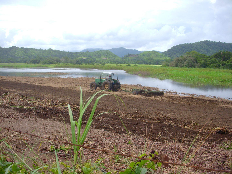 Caletas1 Agosto 2008 tractor en humedal