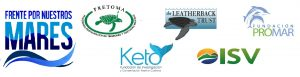 5 logos marzo 2014 y logo frente