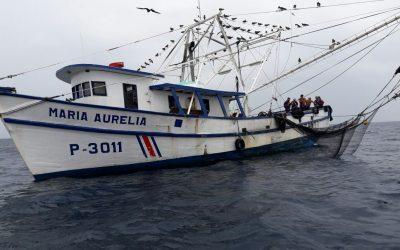 Presentan moción para dar trámite rápido a aprobación de pesca de arrastre camaronero