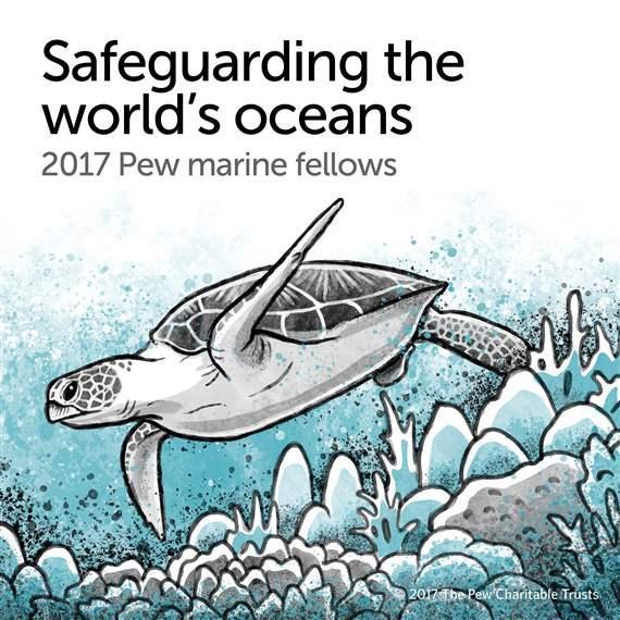 Marine protection organization