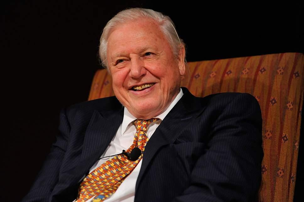 David Attenborouhg Cientifico Británico Manda un Claro Mensaje al Presidente de Costa Rica