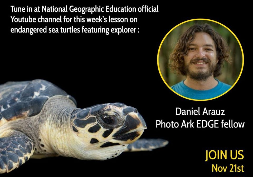 Join us tomorrow to the NatGeo Youtube Channel