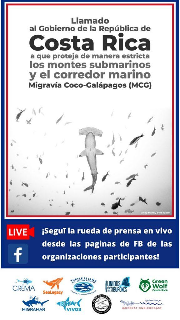 """Coalición aboga por la protección estricta del Corredor Biológico Marino """"Migravía Coco-Galapagos"""""""